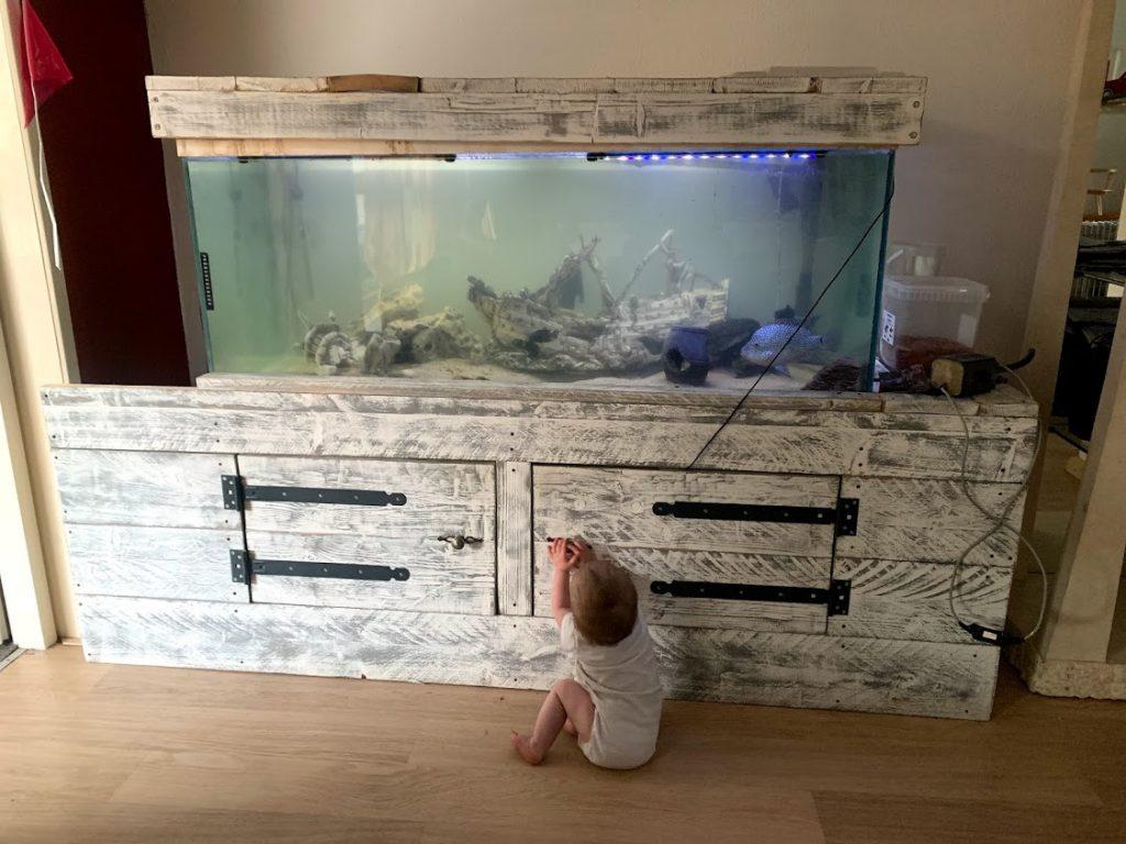 aquarium en jaye dagboek game mama